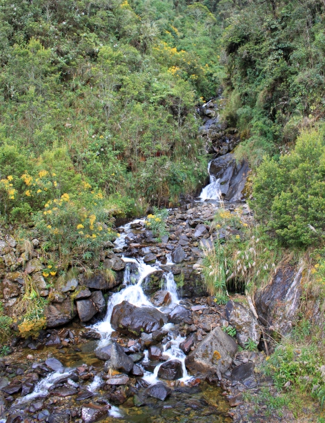waterfalluptoabramalgopass